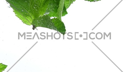Close up several fresh green mint leaves floating in clear transparent water with air bubbles, low angle side view, slow motion