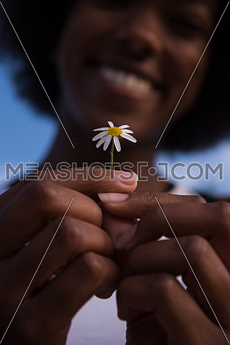 portrait of a young beautiful African American girl with a flower of daisy in her hand