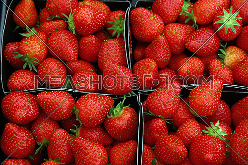 Close up fresh red ripe strawberry berries in paper container boxes on retail display of farmers market, high angle view