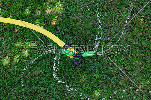 Close up garden automatic irrigation system watering green grass lawn sunny day, high angle view