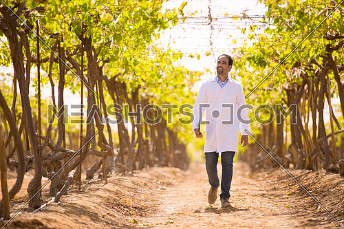 Portrait of a young middle eastern man on the farm of grapes with a smile on his face on a sunny summer day