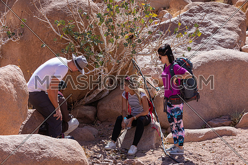 Long shot for group of tourists get rest in the shade besides Almond tree with bedouin guide to explore Sinai Mountain for wadi Freij at day.