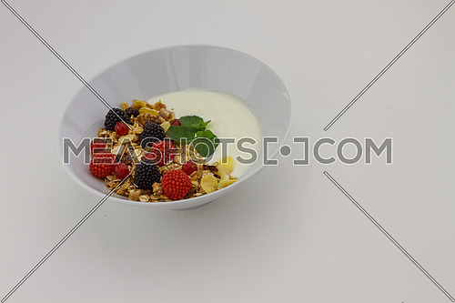 A bowl of cereals and yogurt on a neutral background
