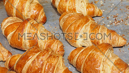 Freshly baked golden brown French croissants in retail bakery store display, close up, high angle view