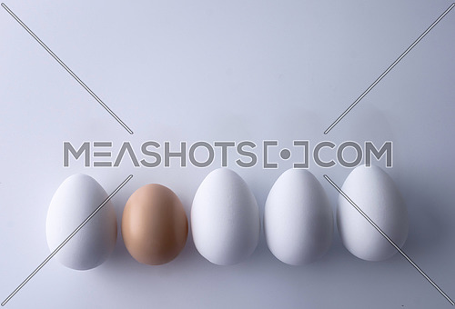 White eggs along with one of different color, conceptual image