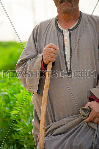 An egyptian farmer holding a wooden stick also known as naboot