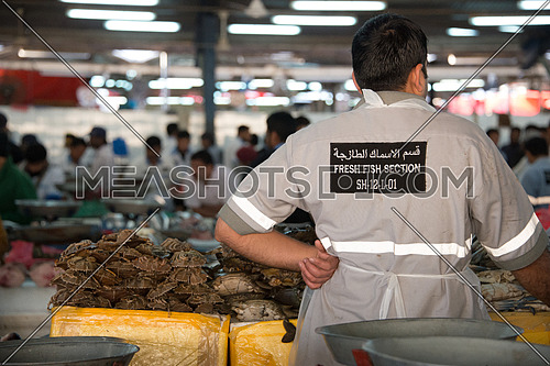 a man from behind standing in Fish Market stall In Dubai