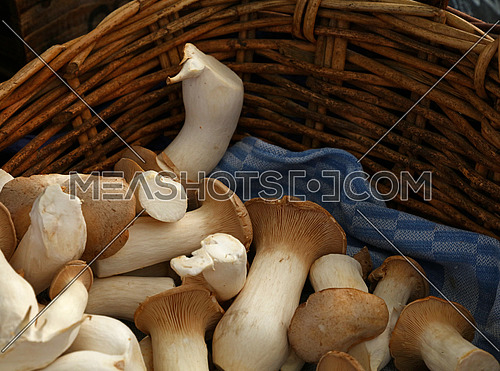 Close up king oyster mushrooms (Pleurotus eryngii, also known as brown trumpet or French horn mushrooms) in wicker wooden basket at retail display, high angle view