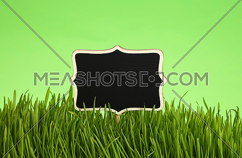 Black chalkboard sign in spring fresh grass greenery close up over natural green background