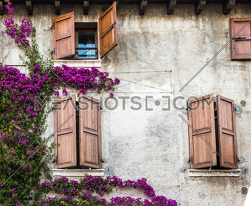 Beautiful vintage windows with colorful flowers and wooden doors, Mediterranean style