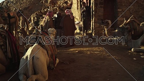 Reveal  shot for camels rest area showing Bedouins in Sinai Mountain at day.