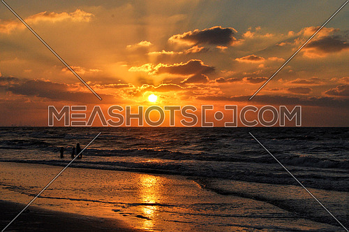 seashore beach during sunset