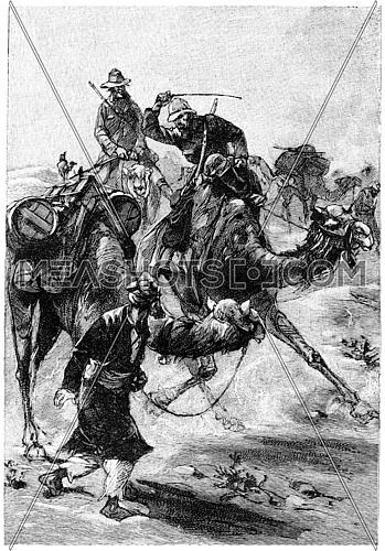 It's not on the camel need to type, vintage engraved illustration. Jules Verne Mistress Branican, 1891.