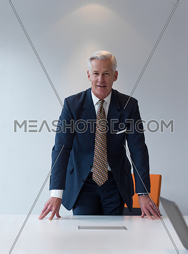 confident and handsome senior business man standing behind table  in meeting room at modern office