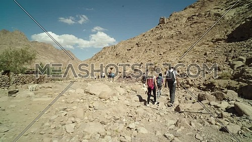 Reveal shot for group of tourists walking besides a fence of rocks showing almond trees while explore Sinai Mountain for wadi Freij at day.