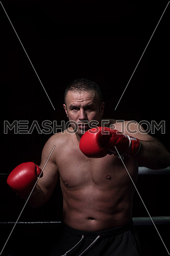professional kickboxer with hands in martial arts position training for the fight in the training ring