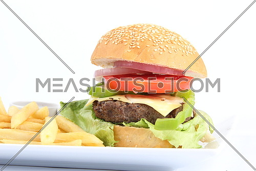 a photo for a hamburger sandwich and meal including french fries