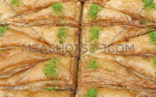 Baklava, traditional oriental sweet pastry cookies with pistachio in retail market display, close up, high angle view