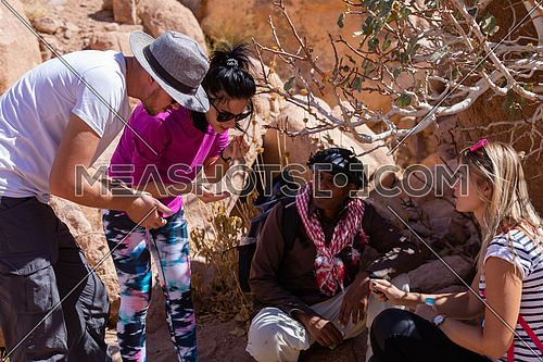 mid shot for group of tourists get rest in the shade besides Almond tree with bedouin guide to explore Sinai Mountain for wadi Freij at day.