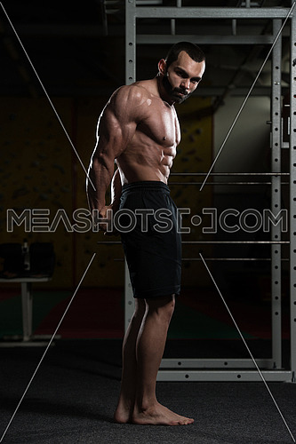 Young Man Standing Strong In The Gym And Flexing Side Triceps Pose - Muscular Athletic Bodybuilder Fitness Model Posing Exercises