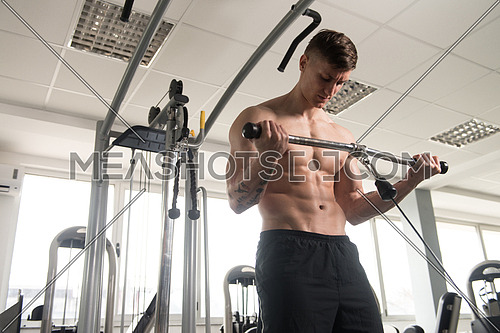 Man In The Gym Exercising On His Biceps On Machine With Cable In The Gym