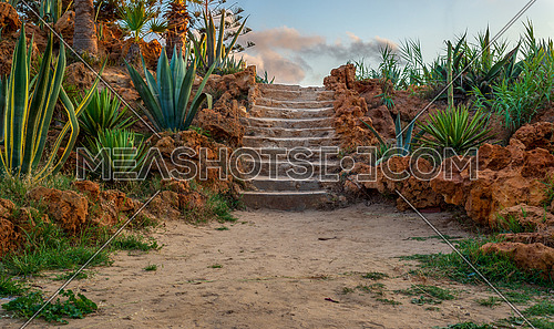 Natural stone stairway with green bushes on both sides and partly cloudy sky at Montaza Public Park in summer time, Alexandria, Egypt