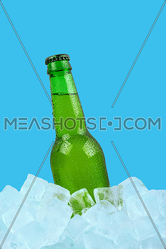 Close up one green glass bottle of cold lager beer on ice cubes at retail display isolated on blue background, low angle side view