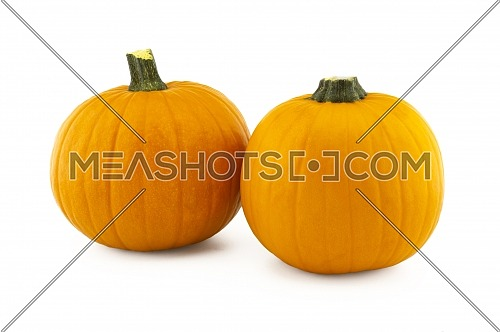 Two orange pumpkins isolated on white background