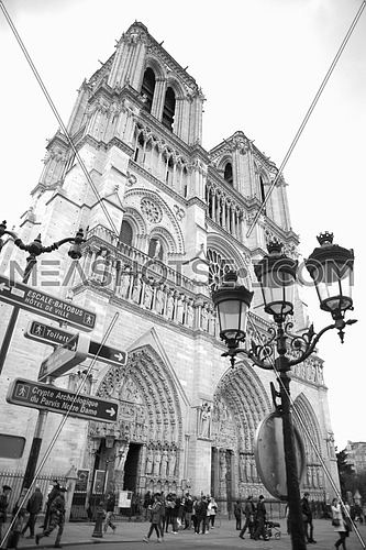 Notre Dame de Paris church exterior in grey scale