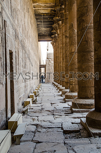 Papyrus columns of Edfu temple and hieroglyphic writings on the columns and the walls in  Edfu, Egypt.