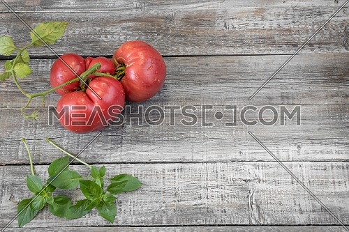 Close-up fresh vegetables for a salad. Ripe, juicy, fresh organic red tomatoes on a wooden background. Agriculture concept. Shallow depth of field.
