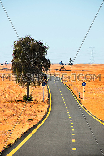 A cycling Track in the middle of the desert
