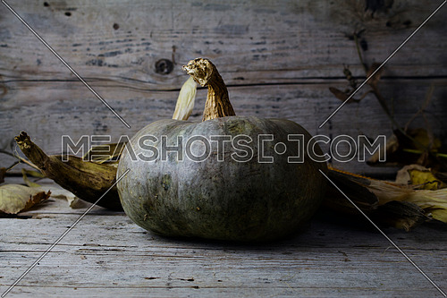 Pumpkins, Corncob and autumn leaves Decoration on a wooden table