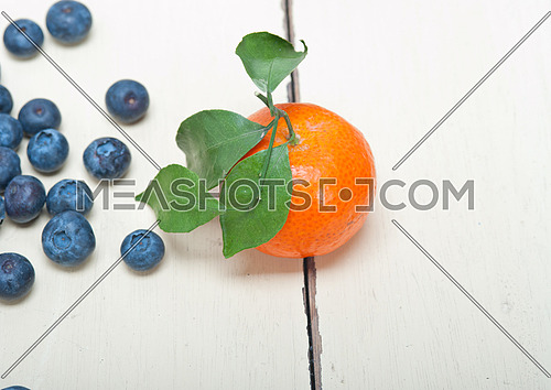 tangerine and blueberry on white rustic wood table