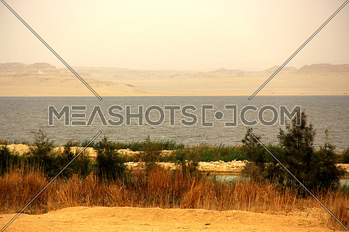 a photo for a lake in Fayoum City south of Cairo