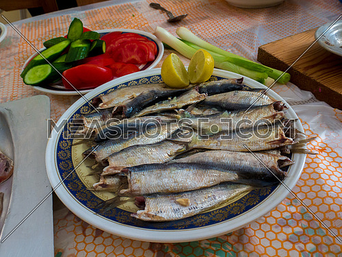 Egyptian traditional Saled Sardine with salad eaten during Sham el nesim