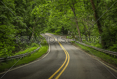 A road to infinity covered with green trees