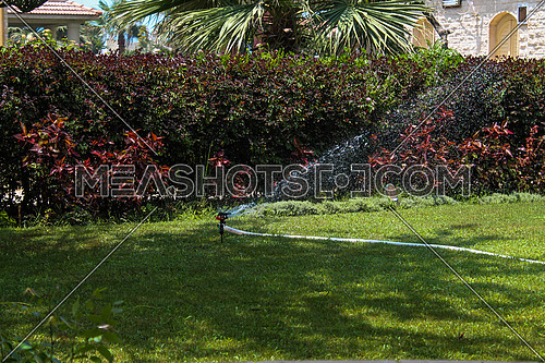 a photo of the irrigation of a private garden