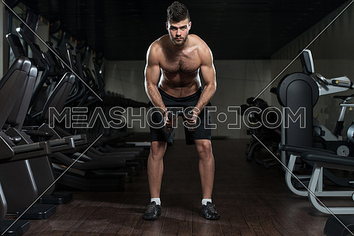 Handsome Man Is Working On His Shoulders With Dumbbells In A Modern Gym