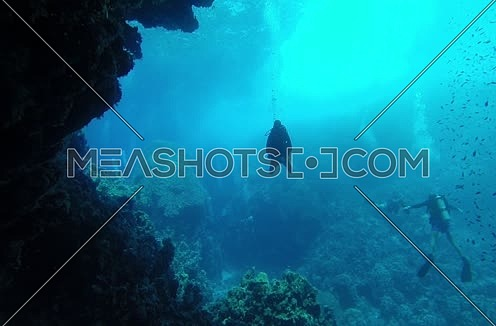 Follow shot for scuba divers and hard coral colony and a big group of fishes underwater at The Red Sea