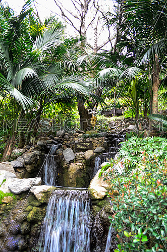 small water falls among trees and plants ina big garden
