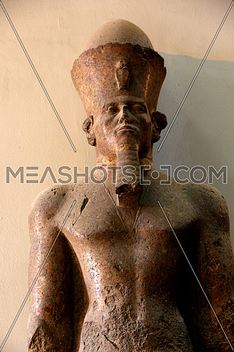 a photo from inside the Egyptian museum in Cairo showing an ancient pharaoh statue , could be of value for Egyptology researchers