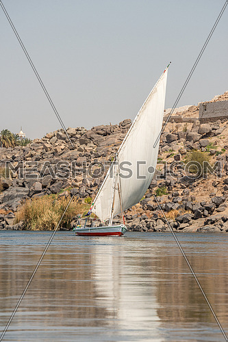 Long shot for a Felluca sailing in River nile at aswan and nubia nile, egypt at