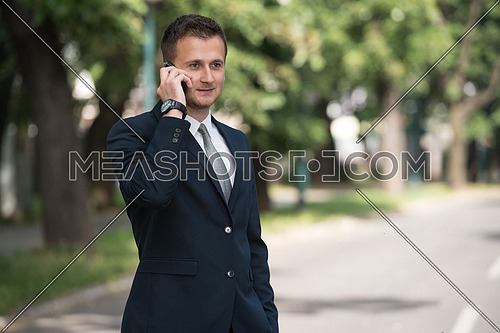 Young Businessman Talking On The Phone While Standing Outdoors In Park