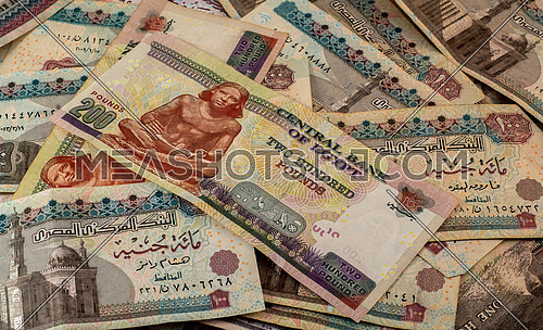 Egyptian pounds