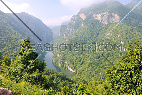 beautiful nature landscape  with river in canyon and green forest background