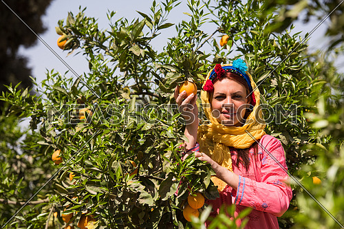 Young beautiful middle eastern woman enjoys the farm orange with a smile on her face on a sunny summer day