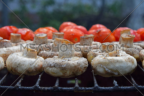 Vegetables in salt and spices being cooked on char grill, white champignons portobello mushrooms and red small tomatoes, close up, low angle view