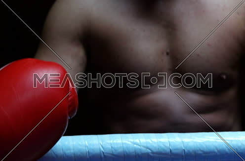 Boxer In Ring Ready To Fight