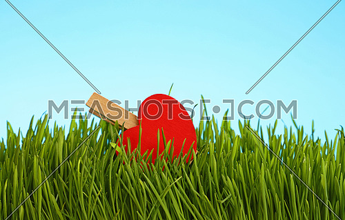 One red wooden heat clothespin in fresh green grass over clear blue sky, close up, low angle view